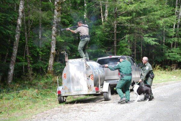 Officers Valentine, Jones, and Richards hazing a black bear